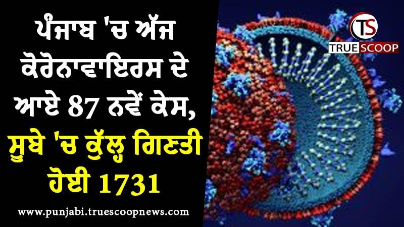 ਪੰਜਾਬ 'ਚ ਅੱਜ ਕੋਰੋਨਾਵਾਇਰਸ ਦੇ ਆਏ 87 ਨਵੇਂ ਕੇਸ, ਸੂਬੇ 'ਚ ਕੁੱਲ੍ਹ ਗਿਣਤੀ ਹੋਈ 1731