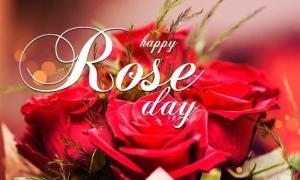 Rose day 2021: ਇਨ੍ਹਾਂ ਪਿਆਰੇ ਸੁਨੇਹਿਆਂ ਨਾਲ ਕਰੋ ਆਪਣੇ ਪਿਆਰ ਦਾ ਇਜ਼ਹਾਰ